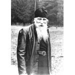 Таврион (Батозский), архим.
